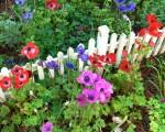 Spring at Colonial Williamsburg