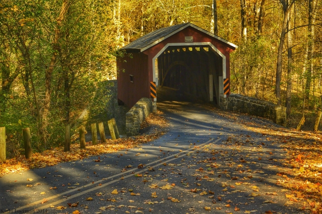 Autumn Bridge I
