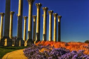 A Capitol Autumn I