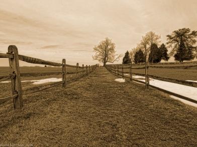 Old Antietam