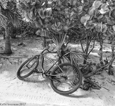Deserted Cycle